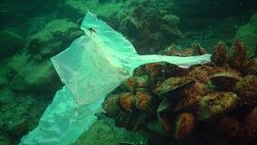 Déchets en plastique et autres débris flottant sous l'eau Pollution marine banque de vidéos