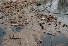 Déchets flottant dans l'eau photo stock