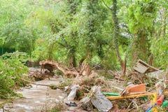 Déchets sur la rivière dans la forêt verte Images libres de droits
