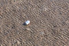 Déchets sur la texture de sable de la plage sablonneuse Image libre de droits