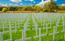 Déclaration contre l'avortement et l'euthanasie contre l'avortement Photographie stock libre de droits