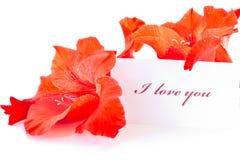 Déclaration de l'amour Images stock