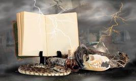 Décoction heureuse de sorcières de Halloween Photos libres de droits