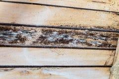 Décomposition due à l'humidité et à la croissance des structures de toit en bois de moules images stock