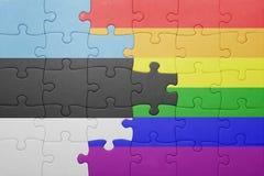 Déconcertez avec le drapeau national de l'Estonie et du drapeau gai Image stock