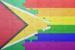 Déconcertez avec le drapeau national de la Guyane et du drapeau gai Images stock