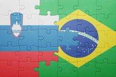 Déconcertez avec le drapeau national de la Slovénie et du Brésil Photo libre de droits