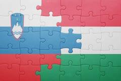 Déconcertez avec le drapeau national de la Slovénie et de la Hongrie Photographie stock