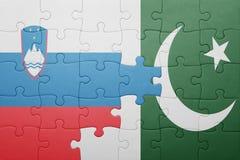 déconcertez avec le drapeau national du Pakistan et de la Slovénie Photo libre de droits