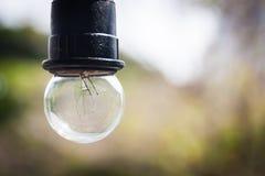 Décor classique de lampe d'ampoule Photos libres de droits