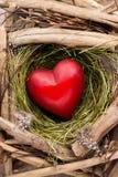 Décor de coeur de Pâques sur un fond en bois Configuration Images libres de droits