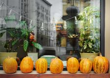 Décor de Halloween dans la ville Photo libre de droits