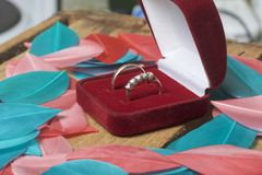 Décor de mariage Les anneaux de mariage dans la boîte se trouvent sur une boîte en bois Ils sont arrosés autour avec les plumes d Photos libres de droits