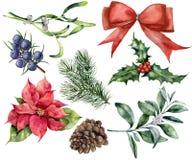 Décor de Noël d'aquarelle réglé avec l'usine Ruban rouge peint à la main, poinsettia, houx, gui, cône de pin, genévrier et Photos libres de droits