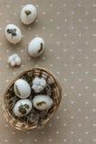 Décor de Pâques Photographie stock libre de droits