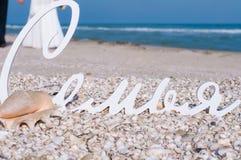 Décor et coquilles de mariage sur la plage Images libres de droits