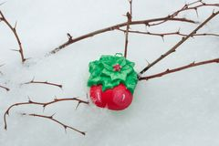 Décor fait main - neige de fond et branches nues Photographie stock