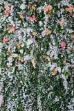 Décor floral Mur de décoration des fleurs Thème de fleuriste, floral Image stock