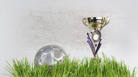Décoratif, ballon de football, folâtre la tasse sur l'herbe images libres de droits