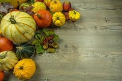 Décoration automnale de divers fruits Photos stock