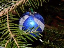 Décoration bleue et blanche accrochant sur la branche Image libre de droits