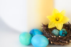Décoration bleue et jaune de Pâques Image libre de droits