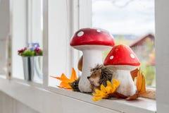 Décoration d'automne à la maison Photos stock