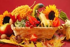 Décoration d'automne Photographie stock