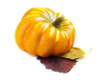 Décoration d'automne avec des potirons photo stock