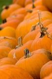 Décoration d'automne - correction de potiron Image libre de droits