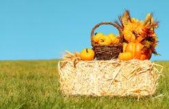 Décoration d'automne Potirons avec le panier sur Straw Bale Photo stock