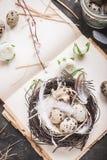 Décoration d'oeufs de pâques Images stock