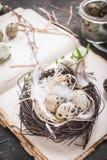 Décoration d'oeufs de pâques Photo stock