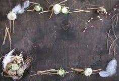 Décoration d'oeufs de pâques Photographie stock