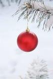Décoration de bille de Noël - photo courante Image libre de droits
