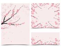 Décoration de branche de Sakura illustration stock