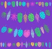 Décoration de fête et de partie avec les feuilles tropicales Photographie stock libre de droits