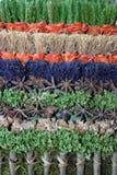Décoration de fines herbes Photos libres de droits