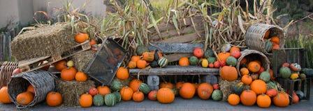 Décoration de Hallowoon d'automne de potiron Image libre de droits