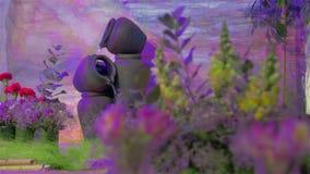 Décoration de jardin de fontaine clips vidéos