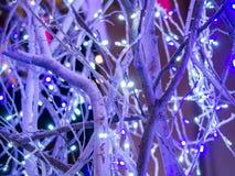 Décoration de lumière de Noël sur l'arbre Photographie stock