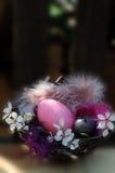 Décoration de nid de Pâques sur le fond brouillé Photos libres de droits
