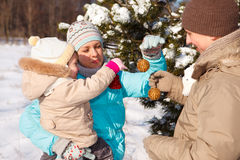 Décoration de Noël Photos libres de droits