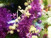 Décoration de Noël avec les branches vertes Images stock