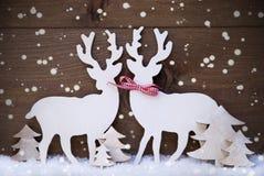 Décoration de Noël, couple de renne dans l'amour, arbre, flocons de neige Photographie stock libre de droits