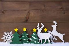 Décoration de Noël, couple de renne, neige, arbre vert Photos stock