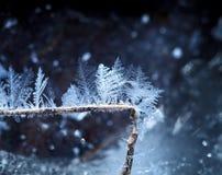 Décoration de Noël d'hiver Photographie stock libre de droits
