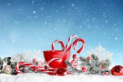 Décoration de Noël dans l'arrangement d'hiver Joyeux Noël Images libres de droits
