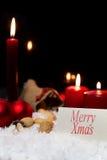 Décoration de Noël dans la neige, signe avec joyeux Noël des textes Image stock