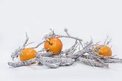 Décoration de Noël sur le fond blanc Calendrier de papier de Tableau de l'année 2019 image stock